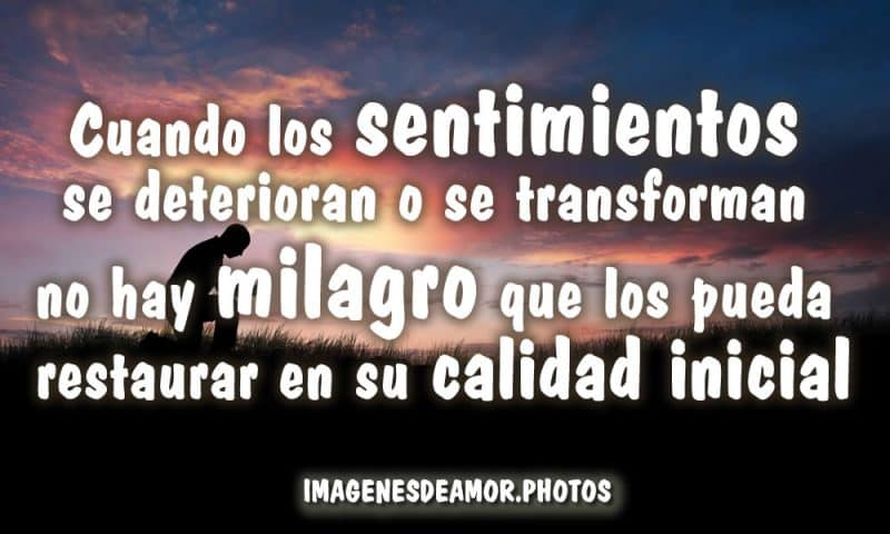 imágenes tristes de amor para llorar cuando los sentimientos se deterioran o se transforman no hay milagro que los pueda restaurar en su calidad inicial
